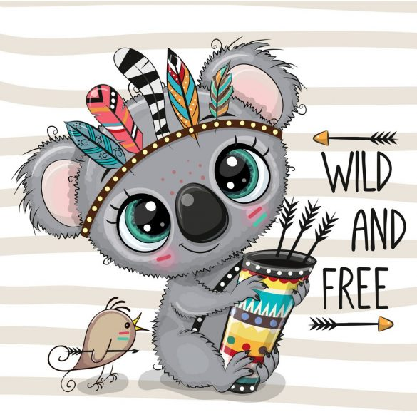 Indián koala 2 minta