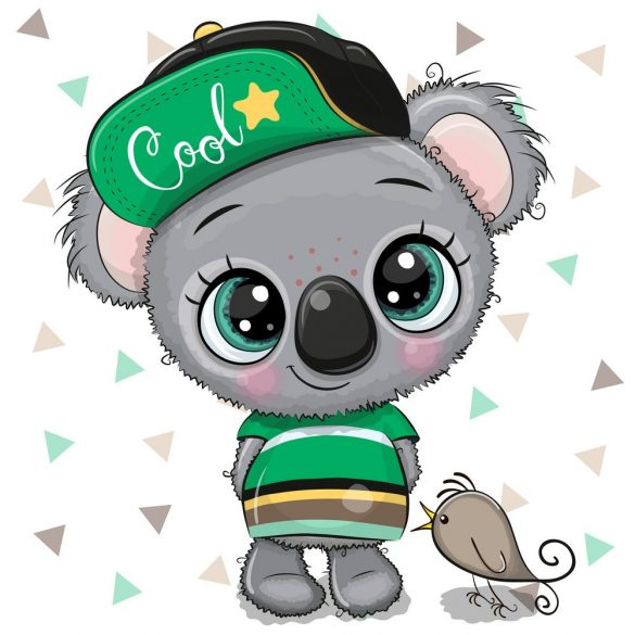 Koala fiú 2 minta