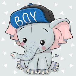 Elefánt fiú 1 minta