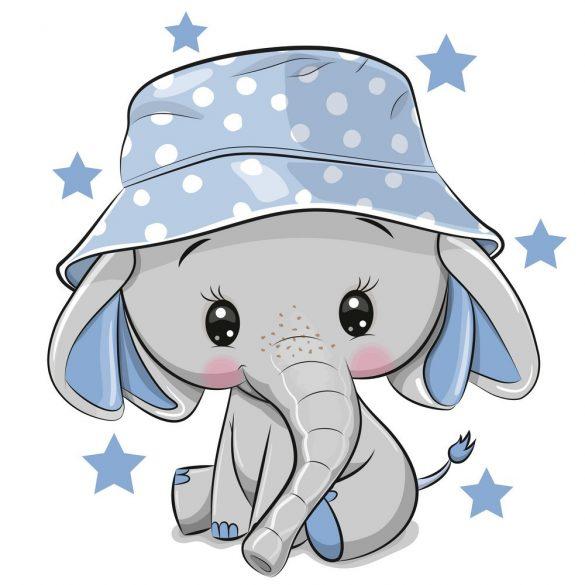 Elefánt fiú 2 minta