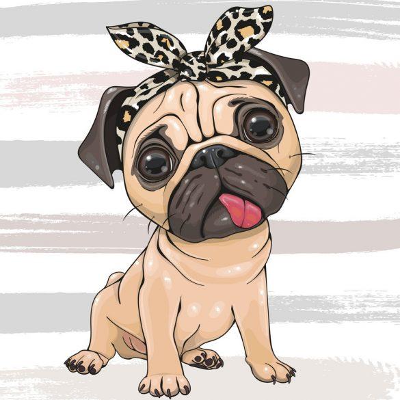 Bulldog lány 1 minta