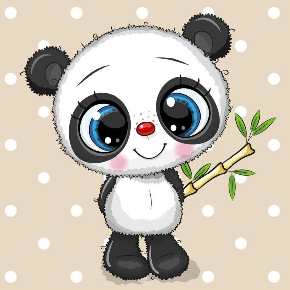 Panda fiú 1 minta