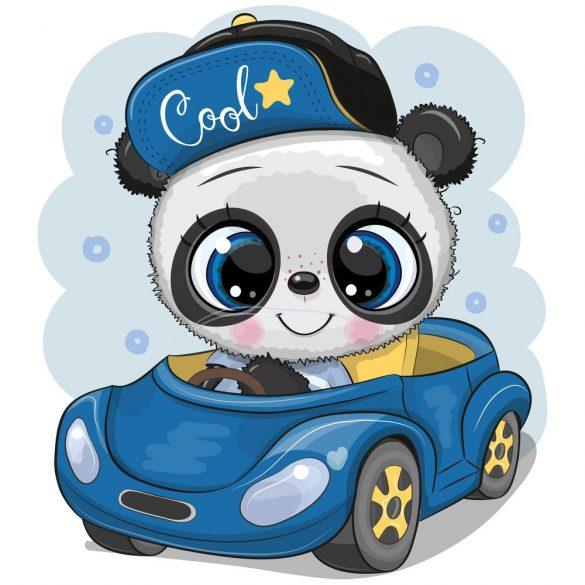 Panda fiú 3 minta