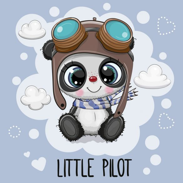 Panda fiú 6 minta