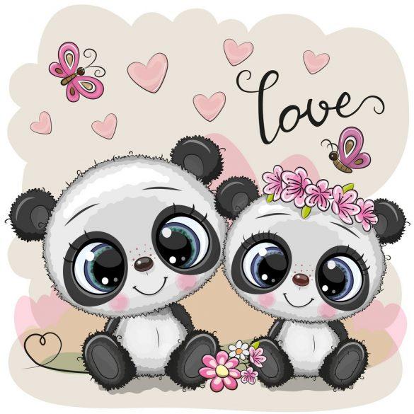 Panda pár 1 minta