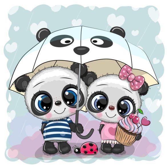 Panda pár 2 minta